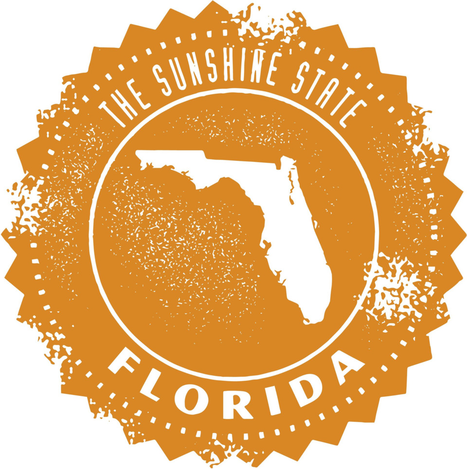 Building a Sustainable HIE Model in The Sunshine State